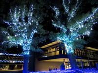 しあわせ回廊 なら瑠璃絵 * ⑤奈良公園バスターミナル - ぴきょログ~軽井沢でぐーたら生活~