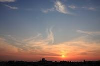 夕空に舞う筋雲(巻雲) - 日々の風景