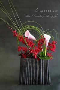 定期装花からレナンセラ バンコクビューティー - Impression Days