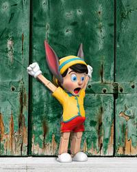 どうしましょうか、このピノキオ - 下呂温泉 留之助商店 店主のブログ