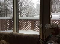 2月は   大雪でした - ハンドメイド  Atelier   maki