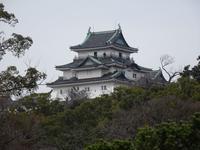 Wakayama Castle和歌山城 - 熊野古道 歩きませんか? / Let's walk Kumano Kodo