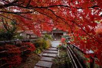 紅葉が彩る京都2019彩秋(直指庵) - 花景色-K.W.C. PhotoBlog