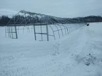 今年の農作業開始! - 長福ファームのブログ