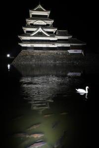 長野県松本市をぶらぶら その8 - 「趣味はウォーキングでは無い」