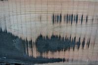 帯鋸目擦る - SOLiD「無垢材セレクトカタログ」/ 材木店・製材所 新発田屋(シバタヤ)
