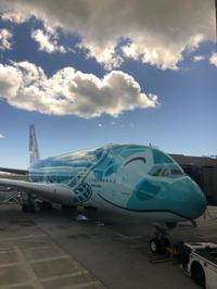 フライングホヌでハワイへ - lalala♪kitchen