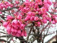 松坂屋富士での春の個展が閉会いたしました。 - 油絵画家、永月水人のArt Life