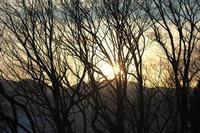 大岡山からの夕景 - 但馬・写真日和