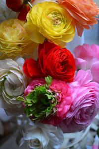 花に灯る「愛」 - Miwaの優しく楽しく☆