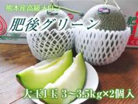 熊本産高級マスクメロン『肥後グリーン』令和3年度も6月上旬から出荷予定!定植直後と苗床の様子(後編) - FLCパートナーズストア