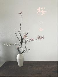 桜の会2020@陶屋なづなさんにて - tukikusa note