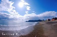 [風景][ぬい撮り] 函館山と海とあみぐるみ羊さん♪ - Smiling * Photo & Handmade 2 動物のあみぐるみ・レジンアクセサリー・風景写真のポストカード