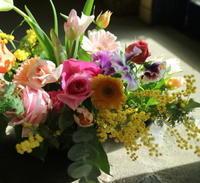 3月8日(日)はミモザの日 - 金沢市 花屋 フローリストビーズニーズ blog