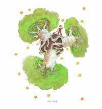 バオバブの木 - ひびののひび