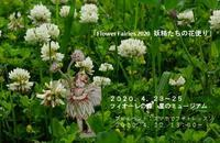 「Flower Fairies 2020  妖精たちの花便り」 & スマホでカメラレッスン - Fiore Spazio 花便り