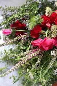 「赤いスイトピー」♪♫、 - Bouquets_ryoko