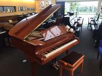貴重なグランドピアノベヒシュタイン S型 入荷! - おんぷちゃんのひとりごと♪ Byたかまつ楽器