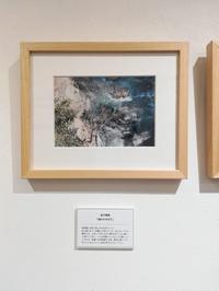 ナダール「旅展」を終えて - 写真の記憶