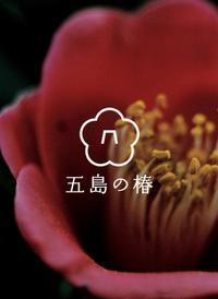 お勧めです!五島の椿プロジェクトのプロモーション映像。 - 手染めと糸のワークショップ