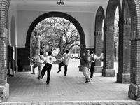 臺灣大學文學院ポーチの太極拳とエントランス - 照片画廊