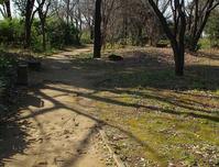 金山緑地公園 - ひのきよ