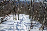 取立山へ - 四季燦燦 癒し系~^^かも風景写真