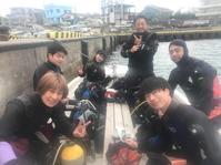 3月9日ダンゴウオ &ウミウシ - NANA  今日の海日誌