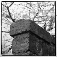 本所教会のカラミ煉瓦の塀 - 萩原義弘のすかぶら写真日記