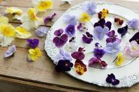 季節は巡る - mille fleur の花とおやつ
