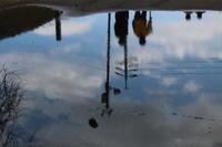 水たまりの青空 - 猪こっと猛進