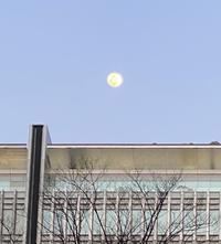 乙女座で満月。水星は順行に。 - プランテプラネットのブログ。ここからもうちょっと