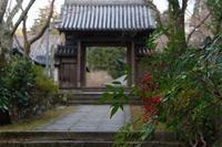 散りの延命寺 - katsuのヘタッピ風景