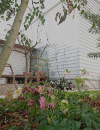ガルバリウム平葺きの外観と内庭 - atelier kukka architects