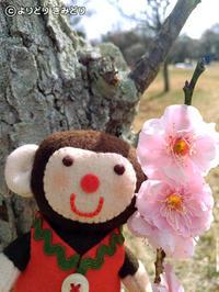 春はそこまで - よりきみのちょろりゴト