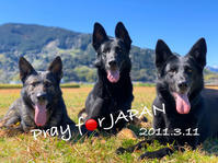 3.11 Pray for JAPAN - kleiner heine