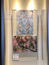 みなと銀行明石支店ショウウィンドウにパネルを展示しました。 - 図工舎 zukosya blog