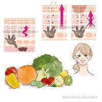 会報誌OZIOBeauty-肌図、食べ物イラスト - 女性誌を中心に活動するイラストレーター ★★清水利江子の仕事ブログ