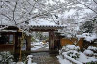 雪の大原宝泉院 - ぴんぼけふぉとぶろぐ2