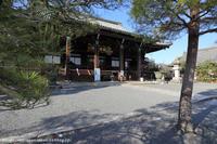早咲きの桜舞い散る清凉寺 - はんなり京都暮らし