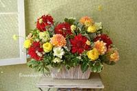 保育園・幼稚園の卒園式を彩るお花、色々。 - 花色~あなたの好きなお花屋さんになりたい~