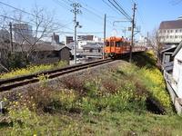 藤田八束の鉄道写真@伊予電と菜の花・・・・春の訪れが日本経済を救えるか、乗り越えたい新型肺炎、子供たちに元気が欲しい - 藤田八束の日記