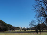 Blue Sky - Free Shot ほっと一息
