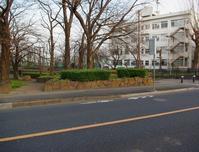 黒目川旧流路の公園とコサギ - ひのきよ