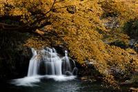 水辺の紅葉 - katsuのヘタッピ風景