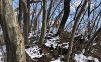 初冬の大倉山と大倉山の謎 - 七ツ森アーカイブ