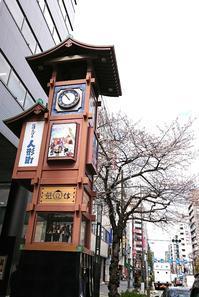 人形町の桜 - 人形町の理容、床屋、レディースシェーブ..cut house SPACE