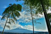 竹と富士 - 風とこだま