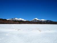 雪原 - 八ヶ岳 革 ときどき くるみ
