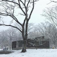 今年最後の雪景色 - atelier kukka architects